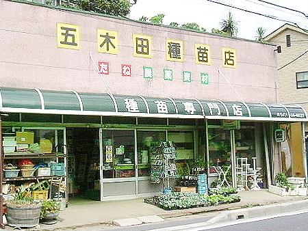 五木田種苗店  種や苗のエキスパート